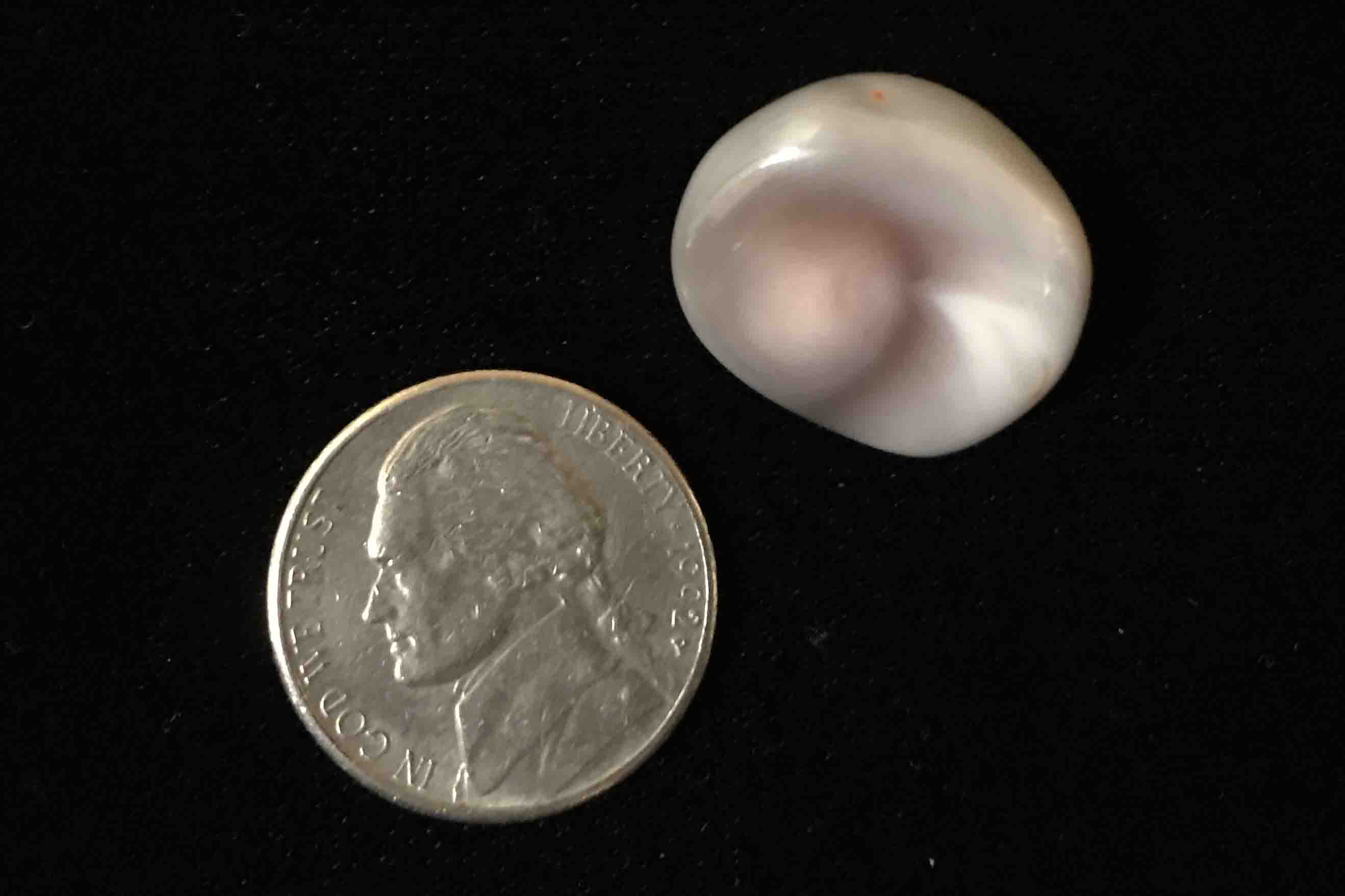 Botswana Agate size compared to a nickel